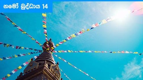 Namo Buddhaya 14