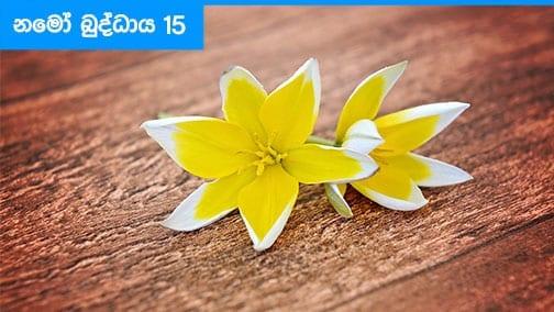 Namo Buddhaya 15