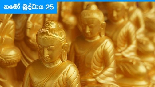 Namo Buddhaya 25