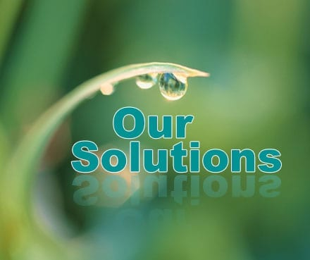pure water project Sri Lanka- Shraddha tv - our solutions