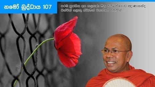 Namo Buddhaya 107