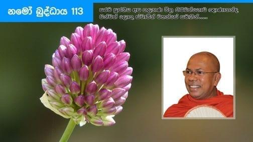 Namo Buddhaya 113 shraddha tv