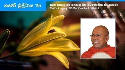 Namo Buddhaya 115