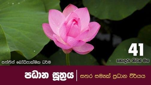sonduru nivanmaga 41 shraddha tv buddhist