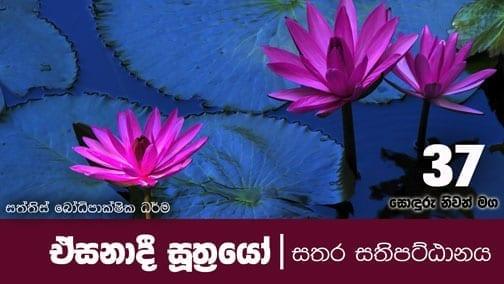 sonduru nivanmaga 37 ඒසනාදී සූත්රයෝ shraddha tv buddhist