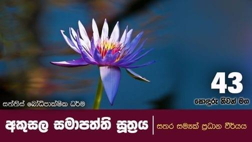 sonduru nivanmaga 43 shraddha tv buddhist