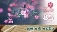Learning Pali language 85 shraddha tv buddhist
