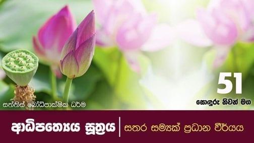 sonduru nivanmaga 51 shraddha tv buddhist