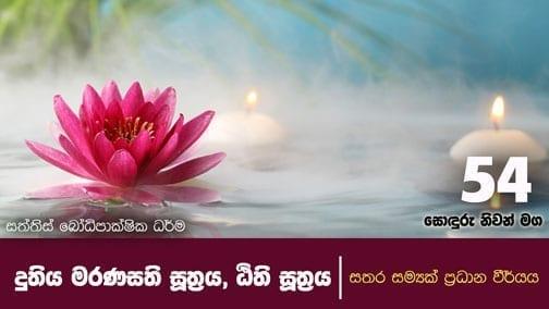 sonduru nivanmaga 54 shraddha tv buddhist