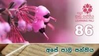 Learning Pali language 86 shraddha tv buddhist