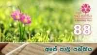 Learning Pali language 88 shraddha tv buddhist