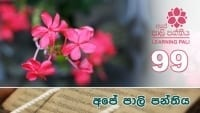 Learning Pali language 99 shraddha tv buddhist
