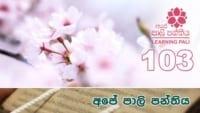 Learning Pali language 103 Shraddha tv buddhist