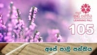 Learning Pali language 105 Shraddha tv buddhist