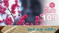 Learning Pali language 109 Shraddha tv buddhist