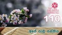 Learning Pali language 110 Shraddha tv buddhist