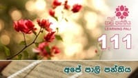 Learning Pali language 111 Shraddha tv buddhist