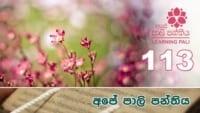 Learning Pali language 113 Shraddha tv buddhist