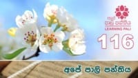 Learning Pali language 116 Shraddha tv buddhist
