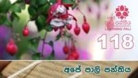 Learning Pali language 118 Shraddha tv buddhist