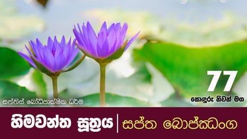 sonduru nivanmaga 77 Shraddha tv buddhist