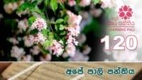 Learning Pali language 120 Shraddha tv buddhist
