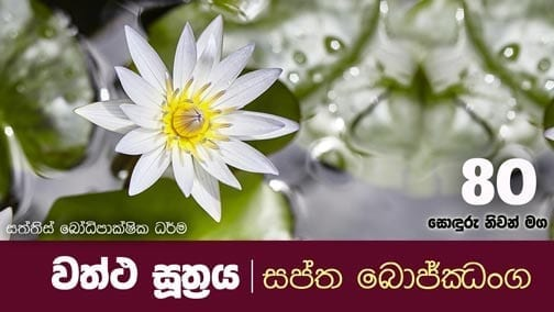sonduru nivanmaga 80 Shraddha tv buddhist