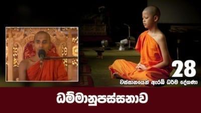 ධම්මානුපස්සනාව Shraddha tv buddhist
