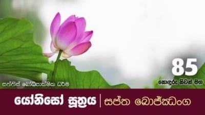 කාර්යබහුල ඔබ ධර්මයේ හැසිරෙන්නේ කෙසේද? Shraddha tv buddhist