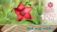 Learning Pali language 127