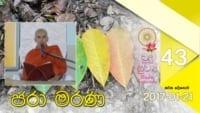 ජරා මරණ Shraddha tv buddhist
