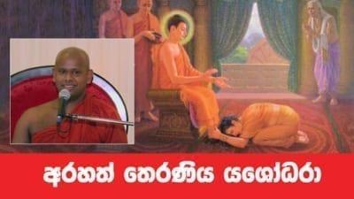 අරහත් තෙරණිය යශෝධරා Shraddha TV