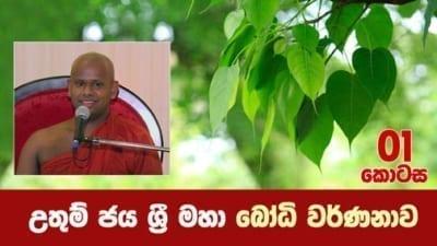Bodhi Wanshaya Shraddha TV Buddhist