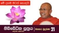 අඳුර විනිවිද එළිය දකින්නට - Kiribathgoda Gnanananda Thero - Nibbedhika Sutta - part 2